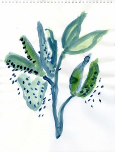 EE2018.331g, Milkweed VII, 2018, watercolor on paper, 14.5 x 11 inches copy